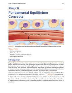 Fundamental Equilibrium Concepts