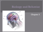 Ch 3 biology and Behavioir Notes