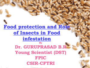 Role of Botanicals against Stored Product Insects