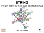 Eukaryotic Protein Networks