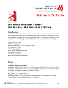 Instructor`s Guide The Human Body: How It Works THE SKELETAL