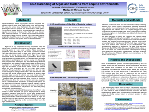 DNA Barcoding of Algae and Bacteria from