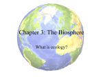 Ecology PP - Student Copy