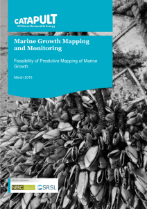 Marine Growth Mapping and Monitoring