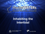 Inhabiting the Intertidal - Marine WATERs