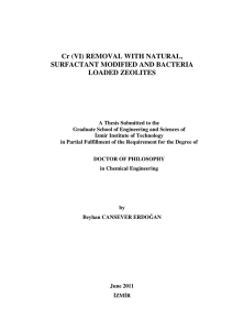 Cr (VI) REMOVAL WITH NATURAL, SURFACTANT - Library