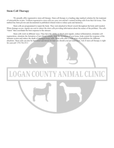 Stem Cell Therapy - Logan County Animal Clinic