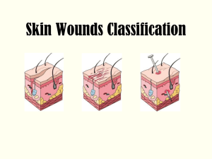 Skin Wounds Classifications-