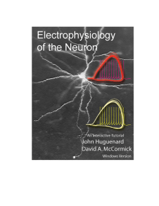 book - Electrophysiology of the Neuron