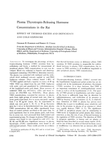 Plasma Thyrotropin-Releasing Hormone Concentrations in the Rat