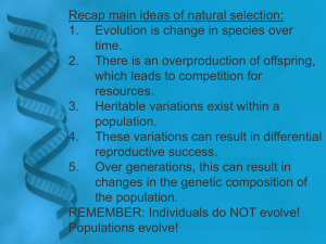 Main Ideas of Natural Selection