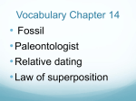 Vocabulary Chapter 14
