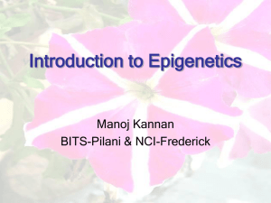 Introduction to Epigenetics - BITS Embryo