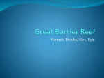 Great Barrier Reef - Mercer Island School District