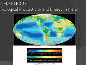 Chapter 13: Biological productivity and energy transfer