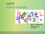 BIOLOGY CLASS NOTES UNIT 8 Human Heredity PART 2
