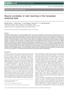 Neural correlates of odor learning in the honeybee antennal lobe
