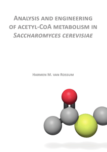 Analysis and engineering of acetyl