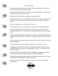 Insect Study Guide o All insects have three main body parts, the