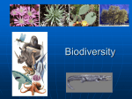 Biodiversity - Madison County Schools