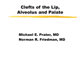 Cleft Lip, Alveolus and Palate