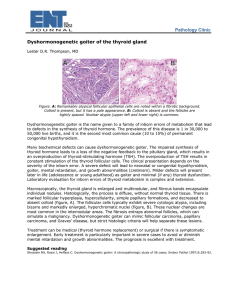 Pathology Clinic Dyshormonogenetic goiter of the thyroid gland