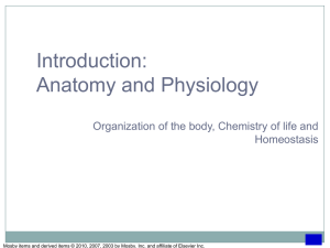 Chapter 1: Organization of the Body