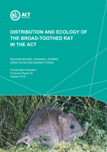 distribution and ecology of the broad