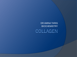 collagen - MBBS Students Club
