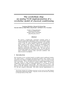 The cerebellum chip: an analog VLSI implementation of a
