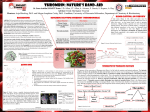 Poster - MSOE Center for BioMolecular Modeling