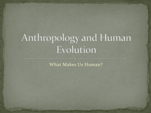 Anthropology and Human Evolution