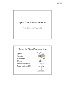 Signal Transduction Pathways Terms for Signal Transduction