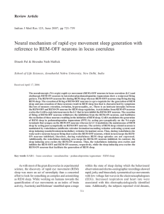 Neural mechanism of rapid eye movement sleep generation