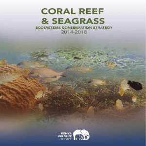 CORAL REEF AND SEAGRASS ECOSYSTEMS CONSERVATION