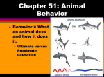 Chapter 22: Animal Behavior