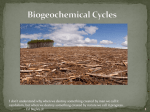 Biogeochemical/Nutrient Cycles Slideshow