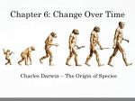 Chapter 7: Evolution