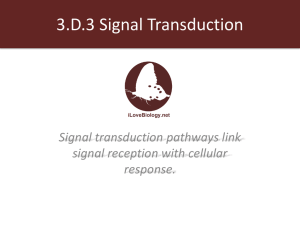 3.D.3 Signal Transduction - kromko