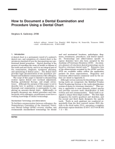 How to Document a Dental Examination and Procedure