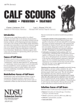 AS-776 Calf Scours - Causes, Prevention