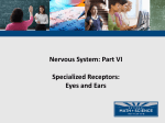 NMSI - 6 Specialized Ears and Eyes Receptors