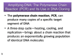 Amplifying DNA: The Polymerase Chain Reaction (PCR) and Its Use