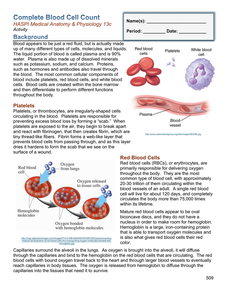 Platelets Red Blood Cells
