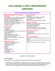 Liver phases 1 and 2 detoxification pathways