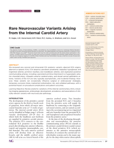 Rare Neurovascular Variants Arising from the Internal Carotid Artery