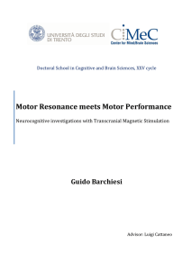 Motor Resonance Meets Motor Performance - Unitn