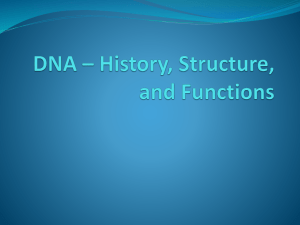 DNA * History, Structure, and Functions