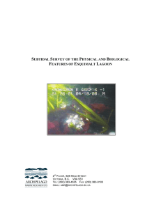 subtidal survey of the physical and biological features of esquimalt