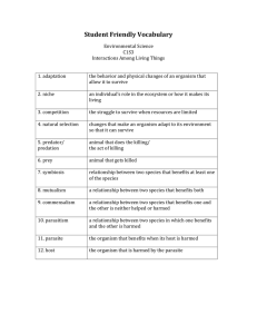 Student Friendly Vocabulary